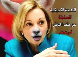 Anne Patterson support terrorism in Egypt