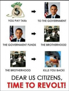 Dear American Citizens it is time to revolt against Obama