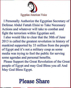 Egyptian American Voice