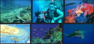 Sharm El-Sheikh Diving