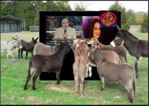 This is Al-Jazeera Qatar, and their audience