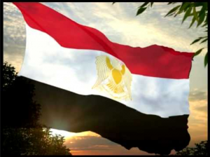 The Arab Republic Of Egypt Constitution year 2013 Egypt is moving towards real Democracy